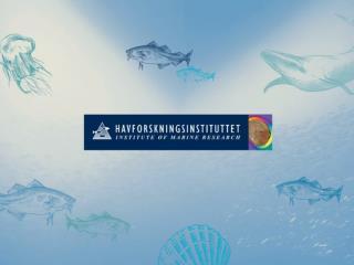 Havforskningsinstituttet FoU i Sognefjorden