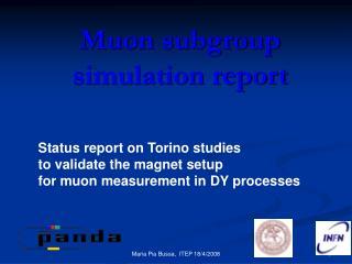 Muon subgroup simulation report