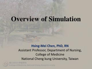 Overview of Simulation
