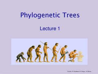 Phylogenetic Trees Lecture 1