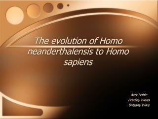 The evolution of Homo neanderthalensis to Homo sapiens