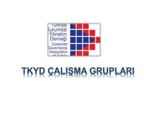 TKYD  alISMA GRUPLARI