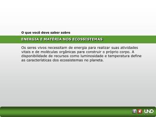 ENERGIA E MATÉRIA NOS ECOSSISTEMAS