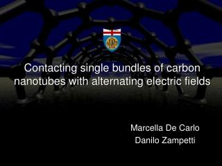 Contacting single bundles of carbon nanotubes with alternating electric fields