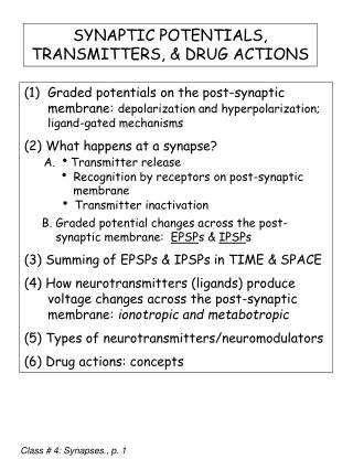 SYNAPTIC POTENTIALS, TRANSMITTERS, & DRUG ACTIONS