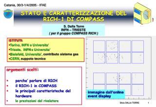 STATO E CARATTERIZZAZIONE DEL RICH-1 DI COMPASS