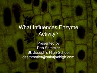 What Influences Enzyme Activity?