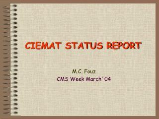 CIEMAT STATUS REPORT