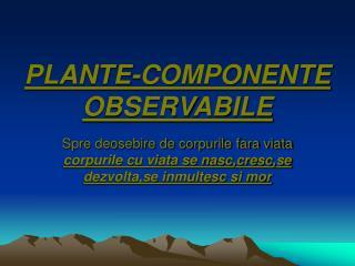 PLANTE-COMPONENTE OBSERVABILE