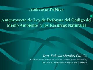 Dra. Fabiola Morales Castillo Presidenta de la Comisión Revisora del Código del Medio Ambiente y
