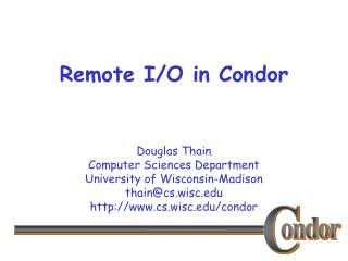 Remote I/O in Condor