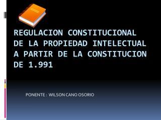 REGULACION CONSTITUCIONAL DE LA PROPIEDAD INTELECTUAL A PARTIR DE LA CONSTITUCION DE 1.991