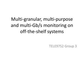 Multi-granular, multi-purpose and multi-Gb/s monitoring on off-the-shelf systems