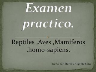 Examen practico.
