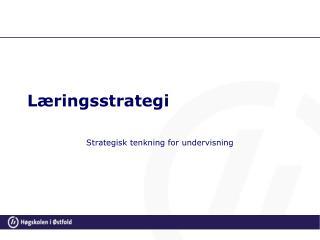 Læringsstrategi