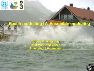 Beach modelling IV: Ensemble modelling