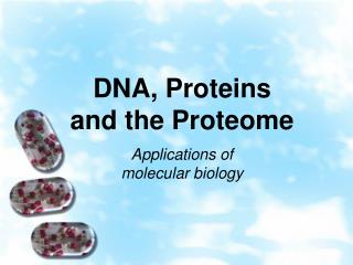 DNA, Proteins and the Proteome