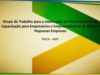 Micro e Pequenas Empresas no Cenário Nacional O PNCA – MPE sob a égide do Plano Brasil Maior