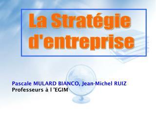 Pascale MULARD BIANCO, Jean-Michel RUIZ Professeurs à l'EGIM