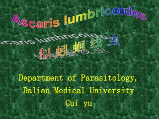 Department of Parasitology, Dalian Medical University Cui yu