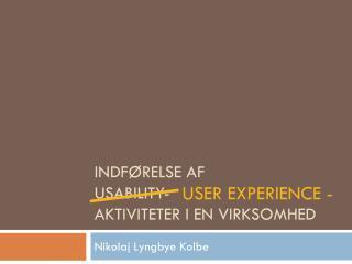 INDFØRELSE AF USABILITY- AKTIVITETER I EN VIRKSOMHED