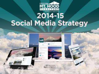 Overall Strategies Blog Facebook Twitter Instagram Pinterest 17  Google + 20  Brightcove/YouTube