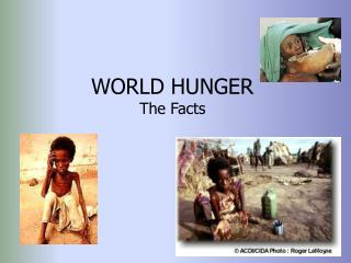WORLD HUNGER The Facts