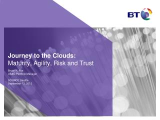 Journey to the Clouds: Maturity, Agility, Risk and Trust
