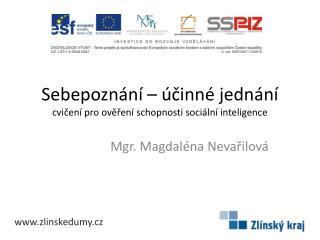 Sebepoznání – účinné jednání cvičení pro ověření schopnosti sociální inteligence