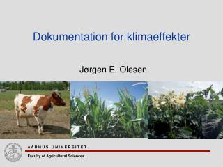 Dokumentation for klimaeffekter