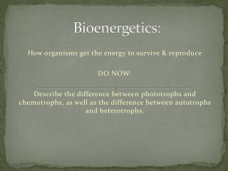 Bioenergetics: