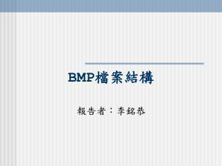 BMP 檔案結構