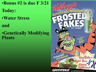 Bonus #2 is due F 3/21 Today: Water Stress and Genetically Modifying Plants