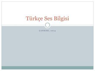 Türkçe Ses Bilgisi