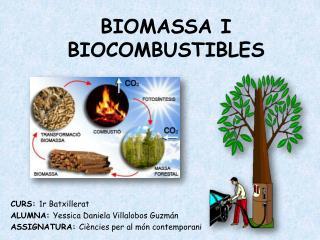 BIOMASSA I BIOCOMBUSTIBLES