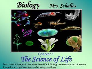 Biology      Mrs. Schalles