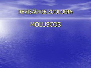 REVISÃO DE ZOOLOGIA MOLUSCOS