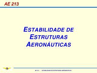 AE 213