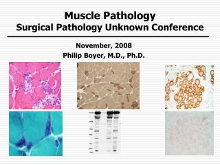 Muscle Pathology Surgical Pathology Unknown Conference