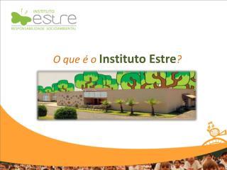 O que � o  Instituto  Estre ?