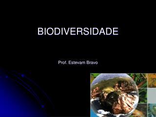 BIODIVERSIDADE Prof. Estevam Bravo