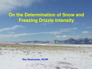 On the Determination of Snow and Freezing Drizzle Intensity