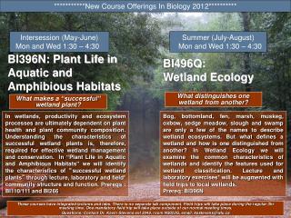 BI396N: Plant Life in Aquatic and Amphibious Habitats