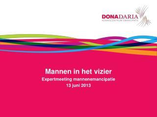 Mannen in het vizier Expertmeeting mannenemancipatie  13 juni 2013