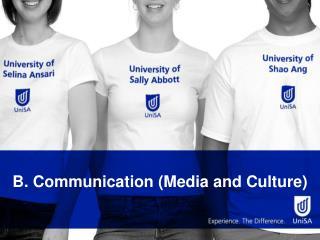 B. Communication (Media and Culture)