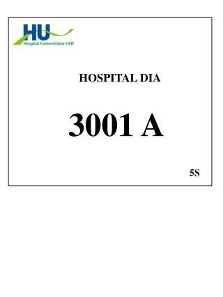HOSPITAL DIA   3001 A