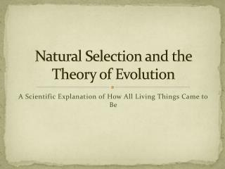 Natural Selection and the Theory of Evolution