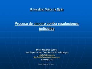 PROCESO DE AMPARO Basamento constitucional  ( Artículo 200 inciso 2 Constitución 1993)