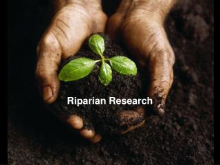 Riparian Research
