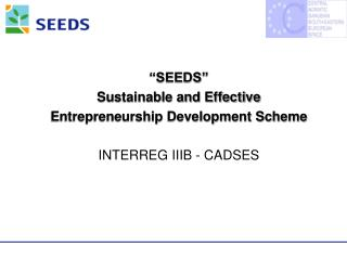 """SEEDS"" Sustainable and Effective  Entrepreneurship Development Scheme INTERREG IIIB - CADSES"
